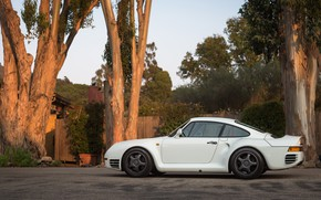 Picture Porsche, 959, German car, Canepa