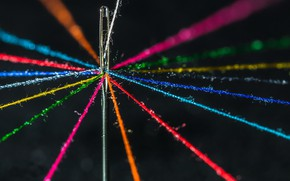 Picture macro, needle, thread