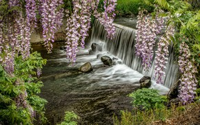 Picture waterfall, river, spring