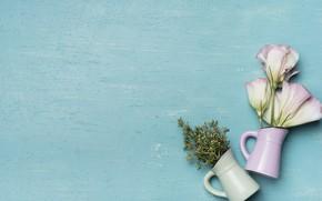 Picture flowers, background, blue, vases, bouquets, vases