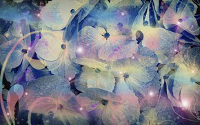 """Picture abstraction, figure, cardboard, picture, screensaver on your desktop, floral fantasy, acrylic paint, purple shades, """"Fireflies …"""