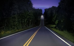 Picture road, forest, night