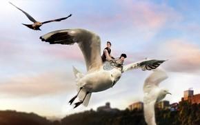 Picture flight, birds, girls, photoshop, photoart