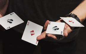 Picture card, focus, 4 aces
