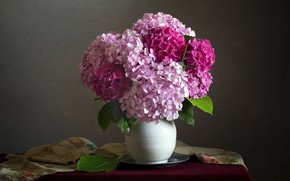 Picture flowers, the dark background, table, bouquet, fabric, pink, still life, hydrangea, composition