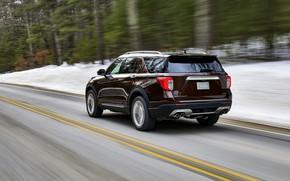 Picture Ford, back, SUV, Explorer, Platinum, 2020