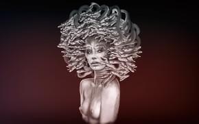Wallpaper Figure, Snake, Medusa, Sculpture, Art, Woman, Medusa, Gorgon, Illustration, Concept Art, Characters, A mythical creature, ...