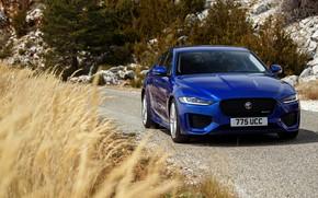 Picture road, blue, stones, Jaguar, plants, slope, sedan, roadside, four-door, 2020, Jaguar XE
