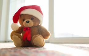 Picture New Year, Christmas, bear, Christmas, New Year, teddy bear, Merry, santa hat