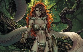 Picture girl, sword, fantasy, snake, trees, weapon, comics, redhead, artwork, shield, warrior, fantasy art, Red Sonja, …
