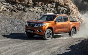 Picture dust, Nissan, pickup, primer, Navara, 2015, NP300