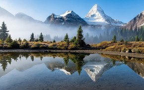 Picture trees, landscape, mountains, nature, fog, lake, reflection