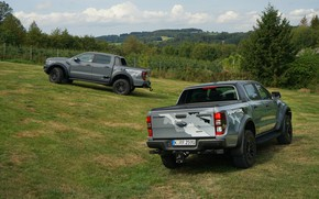 Picture Ford, meadow, grey, Raptor, Ranger, pickups, 2019