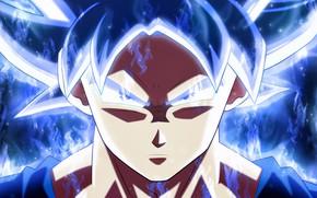 Picture dragon ball, goku, ultra instinct perfected, dragon ball super, Goku Ultra