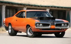 Picture Dodge, Orange, Muscle car, Super Bee