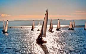 Picture sea, the sun, reflection, day, sails, clear, court, sailing