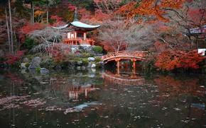 Wallpaper autumn, trees, pond, Park, stones, Japan, the bridge, Kyoto, the bushes, pagoda