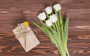 Picture bouquet, tulips, white