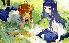 Picture girls, picnic, Card Captor Sakura, animal, Sakura - collector cards