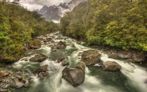 Picture river, stream, stones