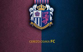 Picture wallpaper, sport, logo, football, Noticeably Osaka