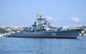 Picture ship, Sevastopol, guard, project 1135m, inquisitive