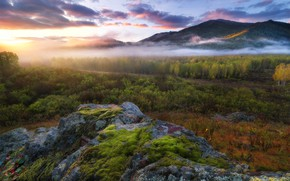 Picture autumn, forest, the sky, clouds, light, mountains, fog, stones, morning