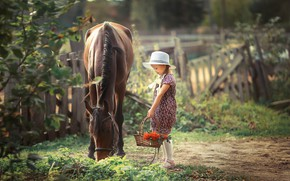 Picture horse, girl, Rowan