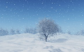 Picture winter, snow, trees, snowflakes, landscape, winter, snow, tree