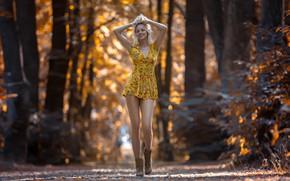Picture forest, girl, bokeh, boots, Markus Hertzsch, yellow dress