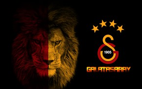 Picture wallpaper, sport, logo, football, Galatasaray