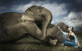 Picture girl, elephant, Asian