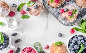 Picture berries, blueberries, dessert, cupcakes, powdered sugar, Bondarenko Rimma