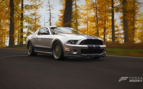 Picture autumn, forest, mustang, ford, shelby GT-500, forza horizon 4