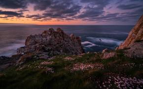 Picture sea, wave, grass, clouds, landscape, sunset, flowers, stones, rocks, lilac, shore, color, the evening, slope, …