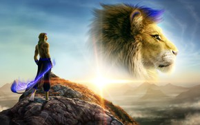 Picture sunset, Leo, hill, lions