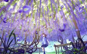 Picture petals, schoolgirl, bag, lilac, Wisteria, Wisteria, by Mocha