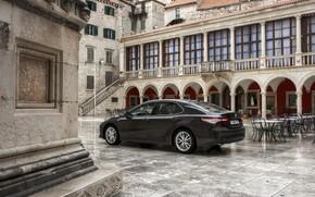 Picture home, area, Toyota, sedan, Hybrid, Camry, 2019