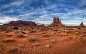 Picture rocks, AZ, USA, Monument Valley