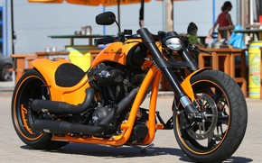 Picture Lamborghini, motorcycle, Harley Davidson, bike, bike, motorcycle, Harley-Davidson, Harley Davidson, Custom bike