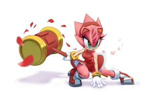 Picture art, Amy Rose, Sonic the Hedgehog