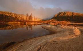 Picture autumn, trees, mountains, shore, pine, pond