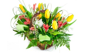 Picture flowers, bouquet, tulips, alstremeria