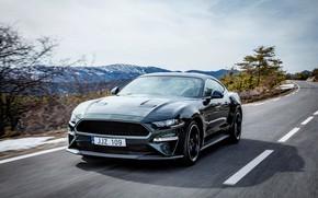 Picture road, the sky, Ford, 2018, V8, Mustang Bullitt, 5.0 L., 460 HP, fastback