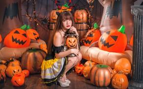 Wallpaper girl, pumpkin, Halloween, Asian, 31 Oct
