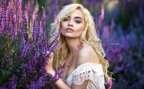 Wallpaper model, grass, in white, dress, makeup, bokeh, beauty, Maxim Romanov, blonde, nature, prices, posing, portrait, ...