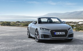 Picture Audi, Roadster, 2018, Audi TT, TTS