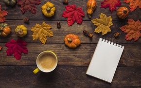 Picture autumn, leaves, background, tree, coffee, colorful, Cup, pumpkin, Board, wood, acorns, background, autumn, leaves, cup, …