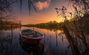 Picture autumn, grass, landscape, sunset, nature, lake, boat, snag, forest
