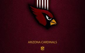 Picture wallpaper, sport, logo, NFL, Arizona Cardinals